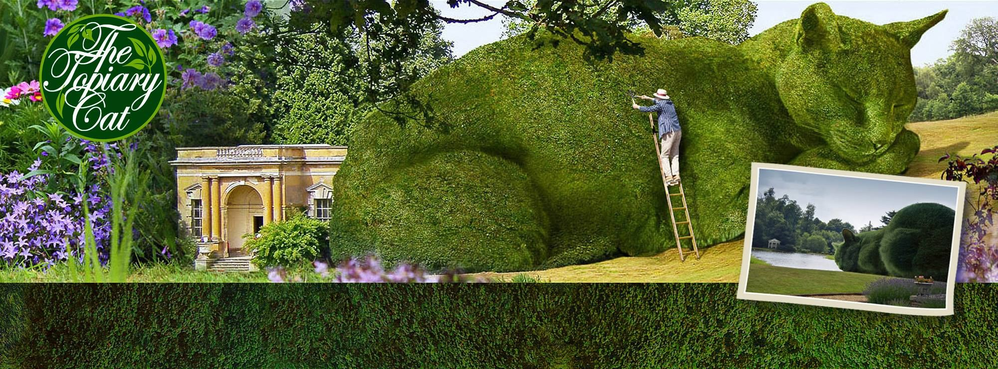 The Topiary Cat, fictional character by Richard Saunders. http://www ...