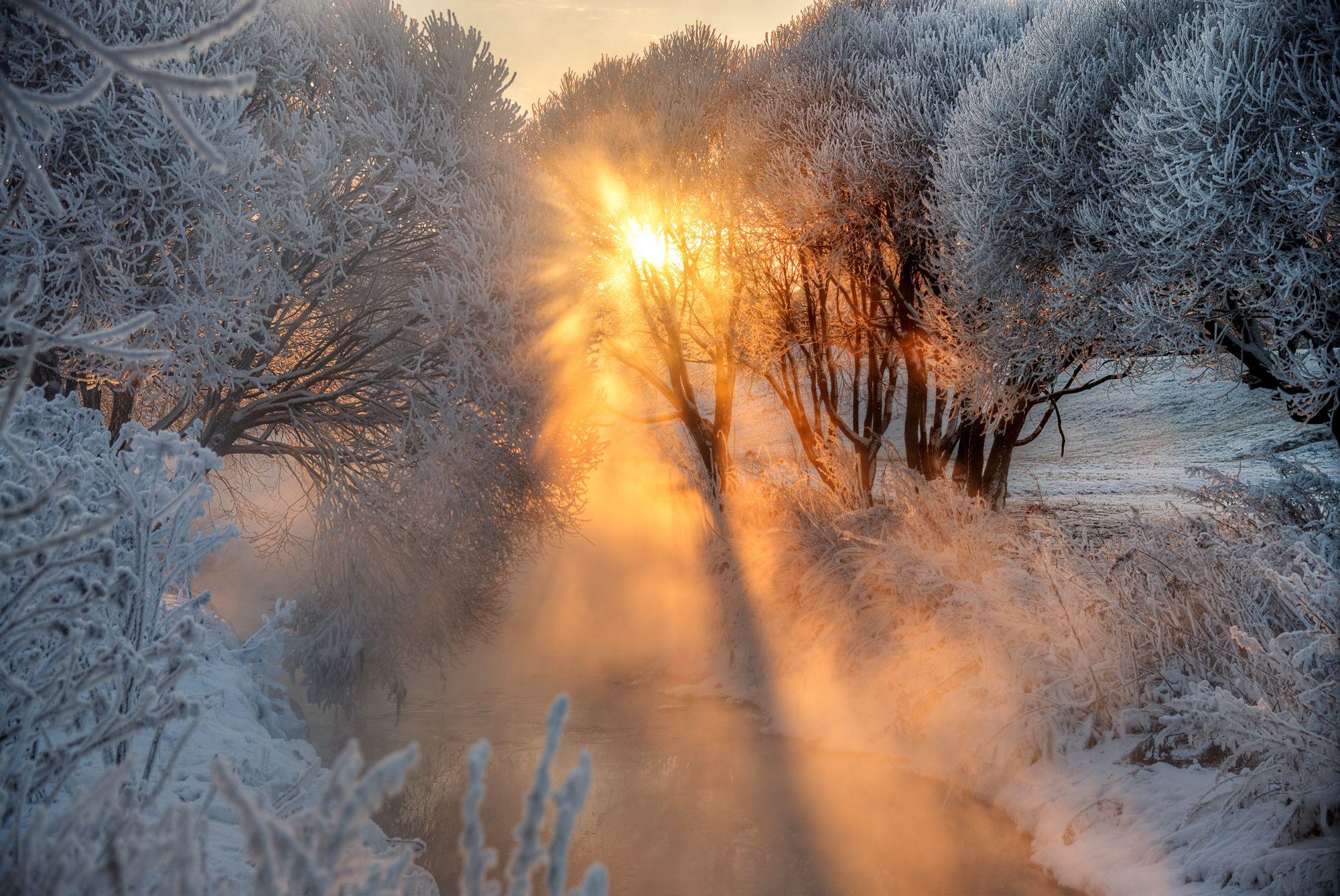 стремиться раннее зимнее утро фото тонирование