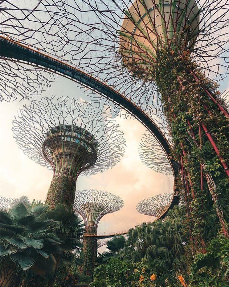 广场公园 image by houmingqi Gardens by the bay, Singapore