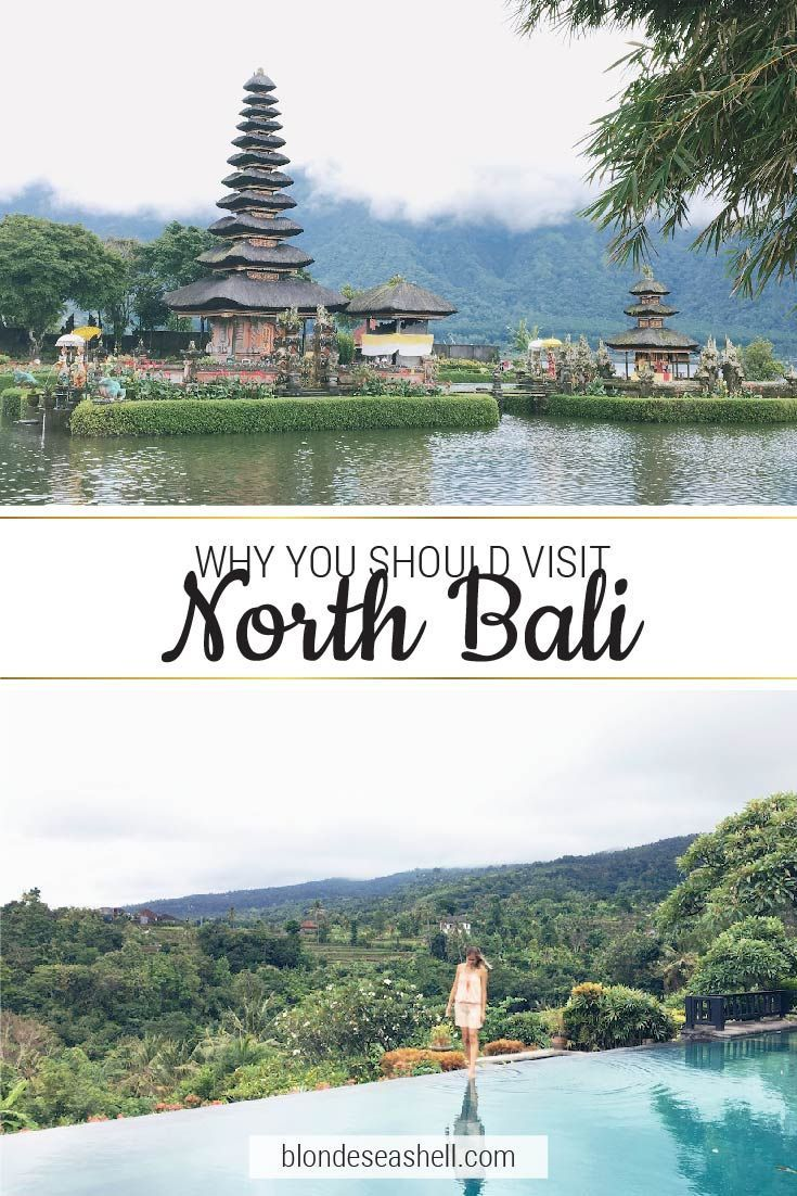 The ultimate travel guide to Lovina in North Bali for Bali beginners. What to do in North Bali, where to stay and eat.