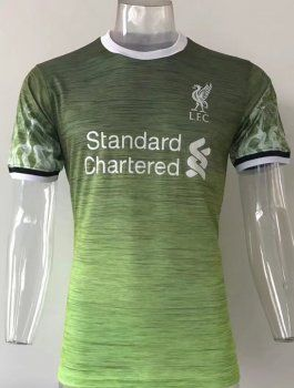 3e5c844b6 liverpool fc 2017 18 season lfc green training shirt