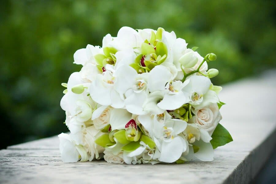 Beautiful Wedding Bouquet Arranged With: Cream Roses, White Phalaenopsis Orchids + Lime Cymbidium Orchids