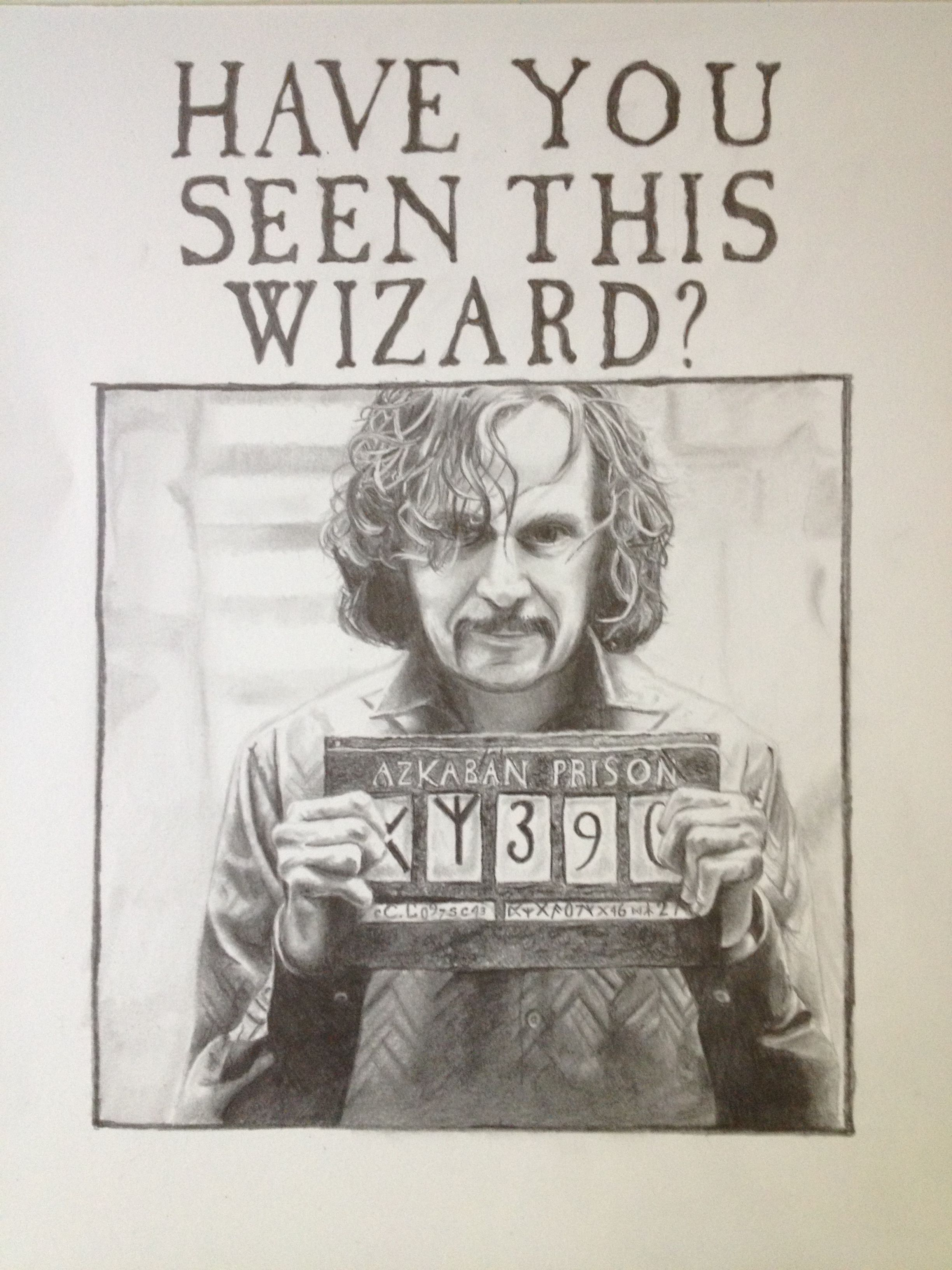 Sirius Black from Harry Potter, Pencil Drawing on Bristol Paper