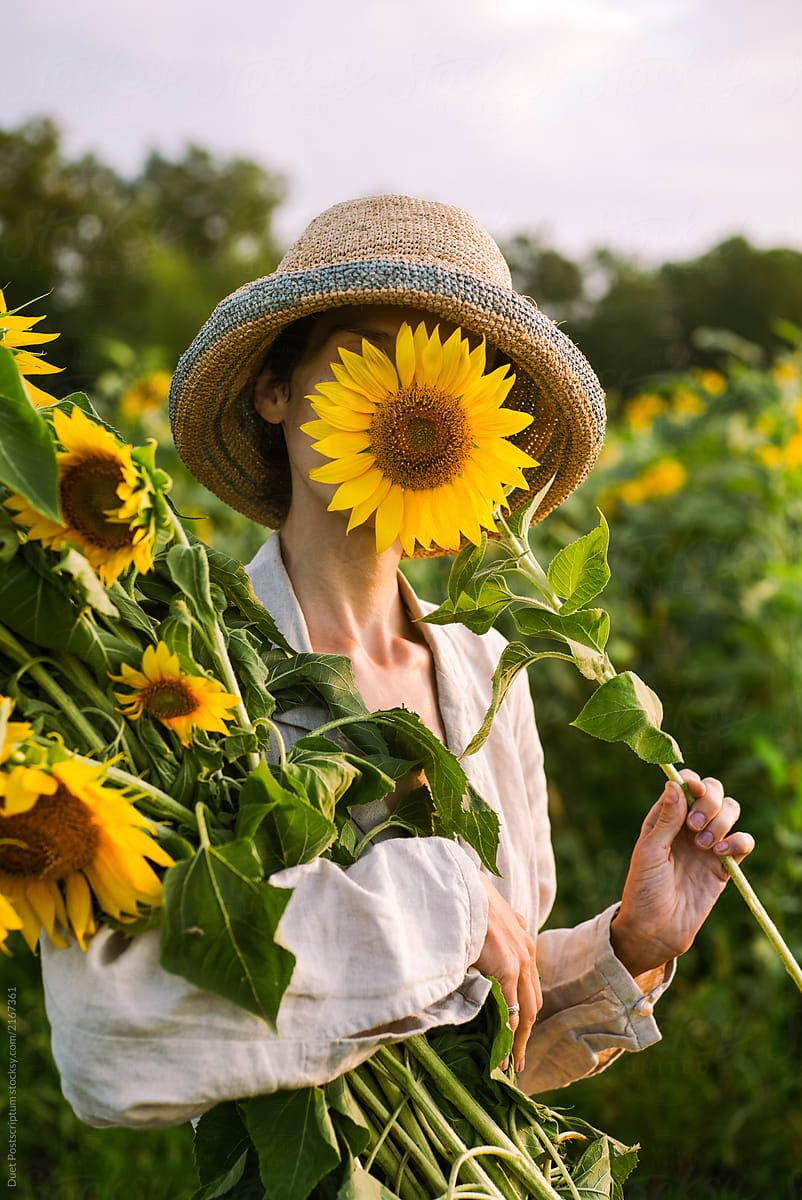 Beautiful Girl Collects Sunflowers In A Summer Field Happy Time In 2020 Sunflower Pictures Sunflower Flower Aesthetic