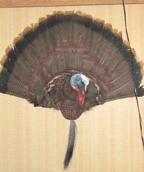 how to make a turkey plaque