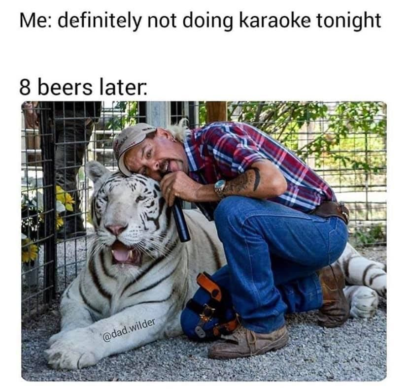 Best Tiger King Memes In 2020 Funny Memes Images Haha Funny Memes