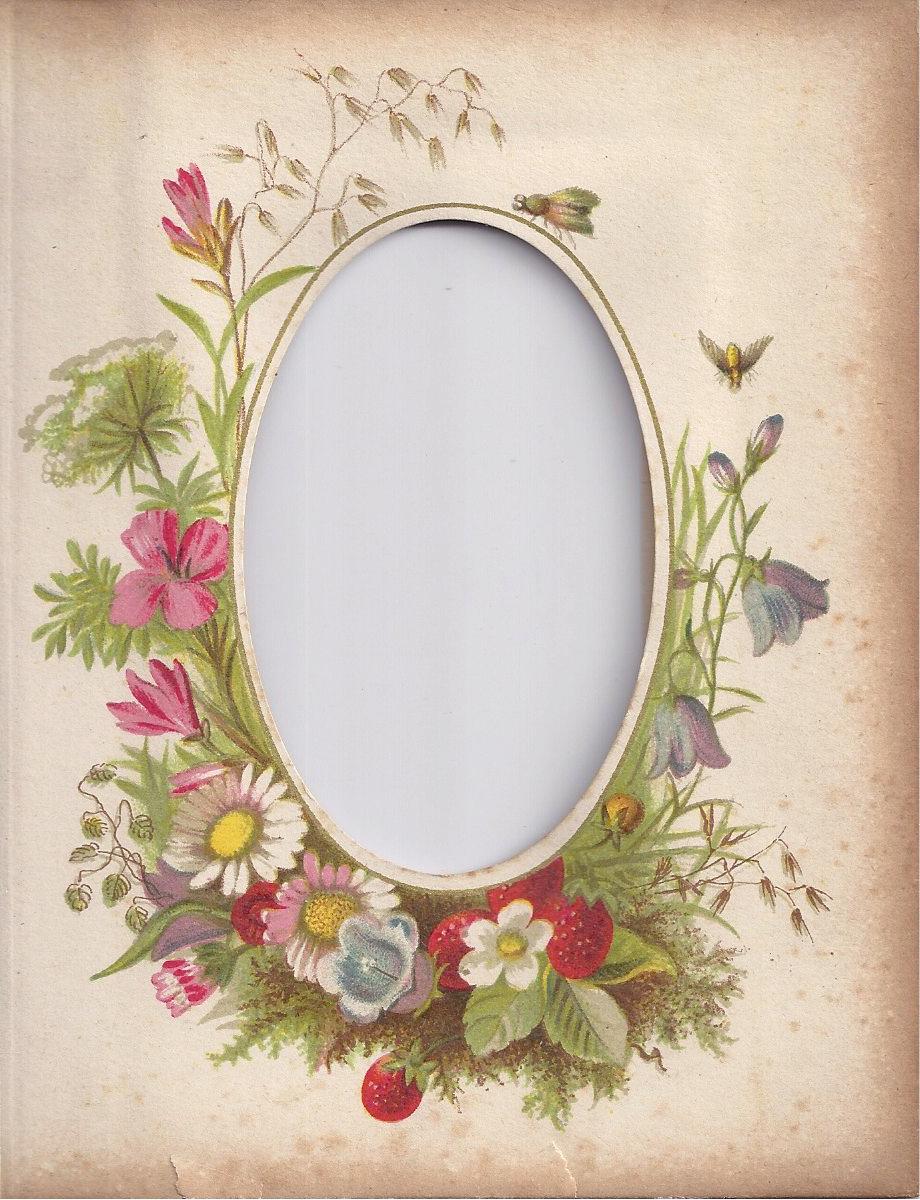 Zibi Vintage Scrap Coraz Wiecej Wiosny Vintage Flowers Album Frames Vintage Photo Album