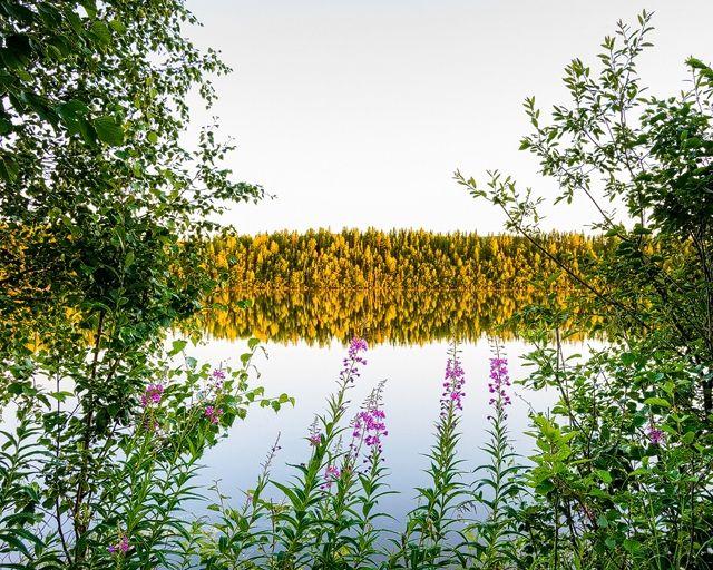 Luleälv. Foto: Mikael Svensson