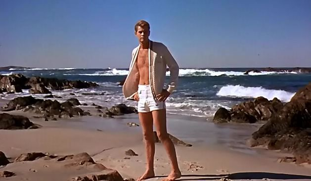 troy donahue images