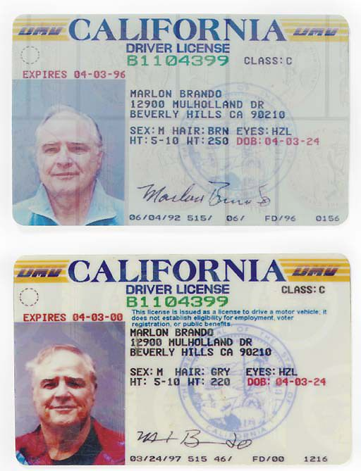 Celebrities Issued Marlon Licenses Let's Brando Deaths 1997 d And Of Some See Brando's I 1992 Driver California Two Celebrity