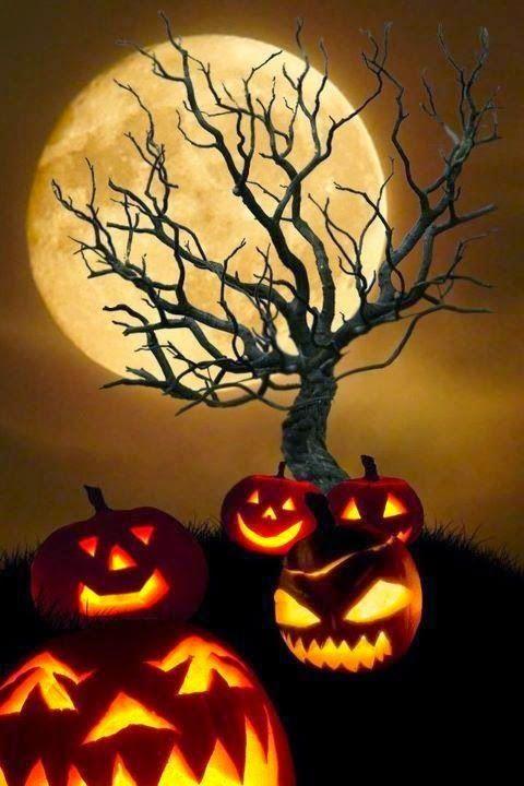 Halloweenbilder Facebook Halloweenbilder Kostenlos Halloween Bilder Halloween Spruche Halloween Grusse