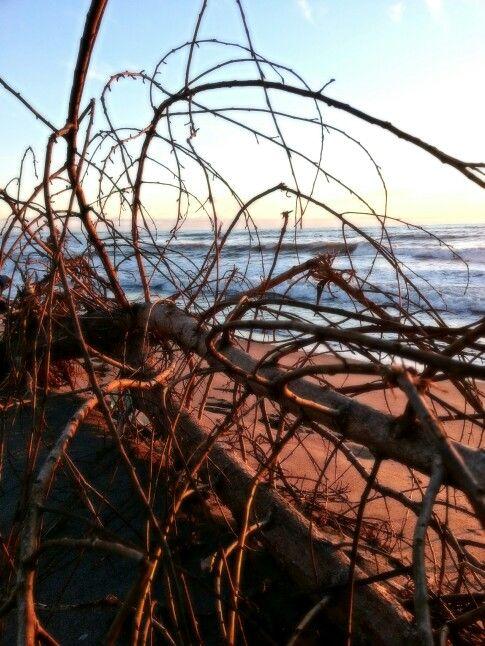 Mare d'inverno. .