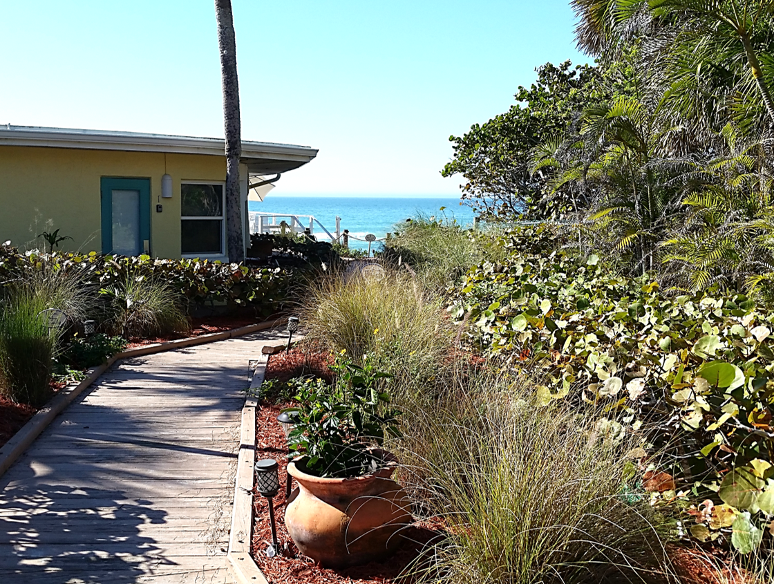 Path to paradise!   Florida hotels, Pearl beach, Florida ...