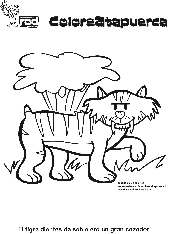 02-dibujos-para-colorear-animales-tigre.jpg (2322×3054 ...