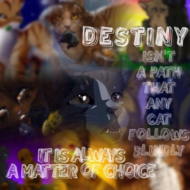 Destiny isn't a path that any cat follows it is always a
