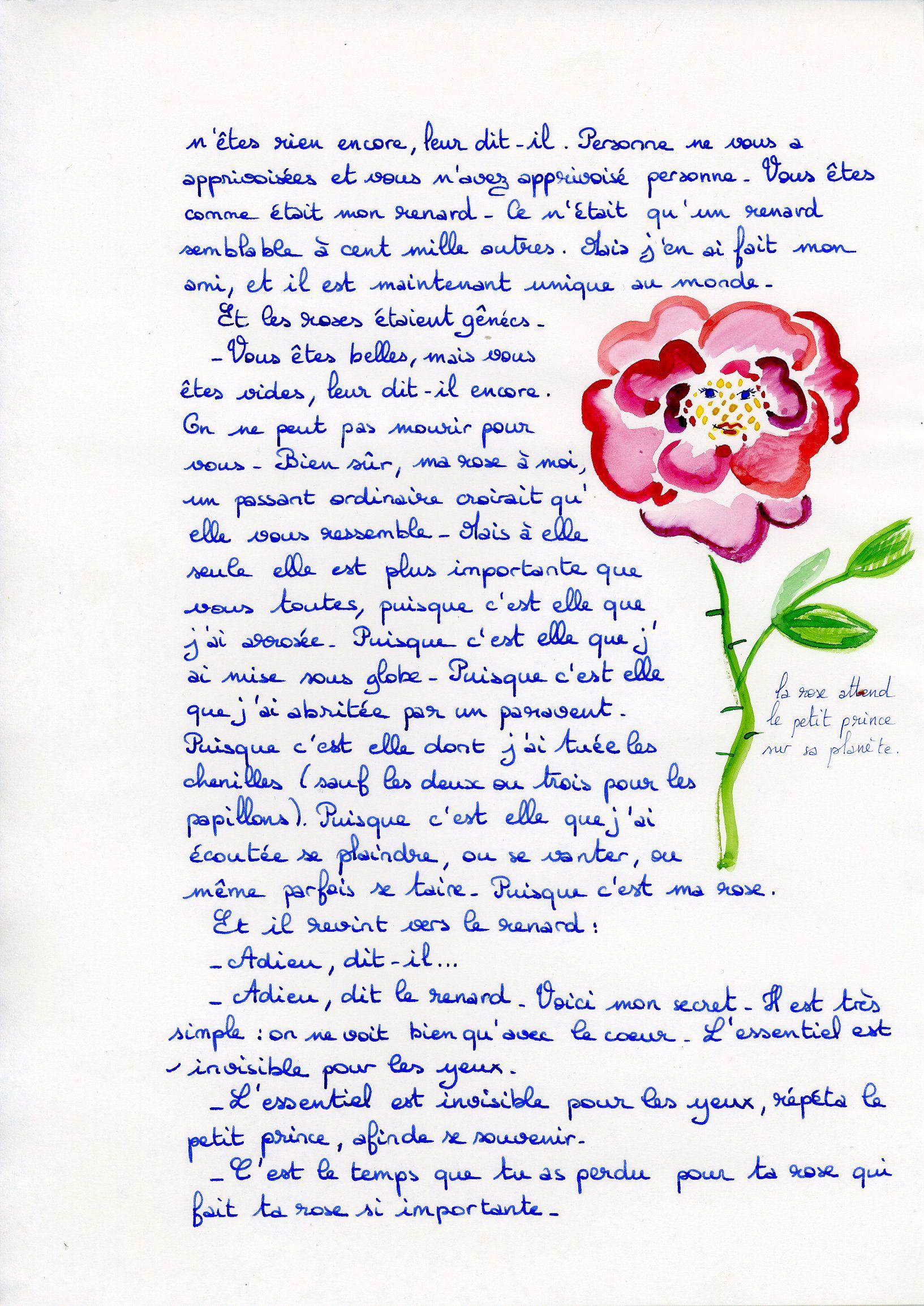 Epingle Par Katie Rose Sur Words Pinterest Le Petit Prince