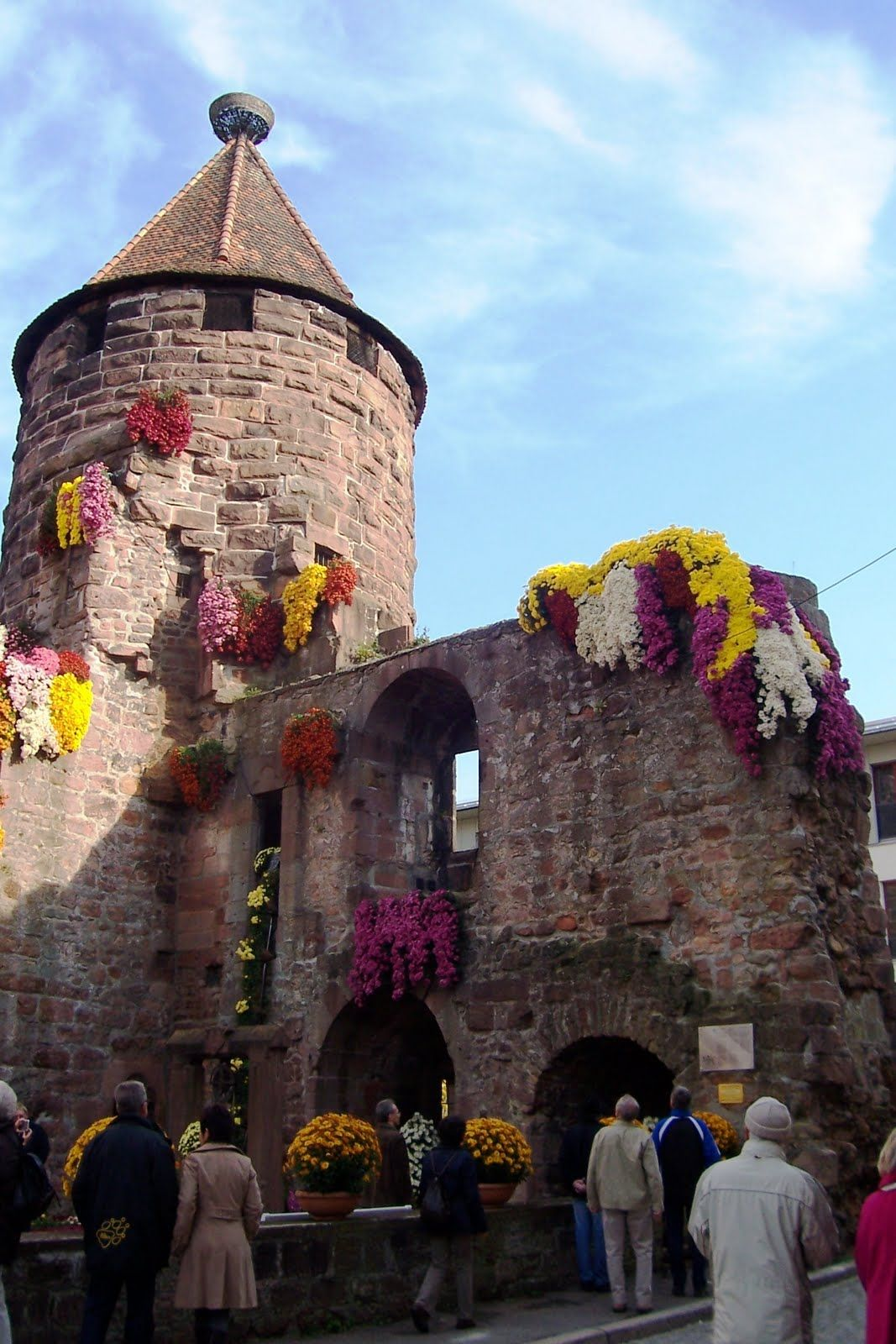 Remains Of The Castle In Lahr Germany During The Chrysanthemum