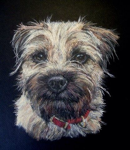 A Pastel Painting Of Ruby The Border Terrier Pet Portraiture