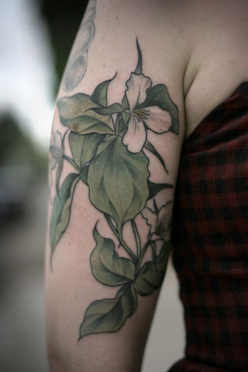 trillium botanical illustration tattoo by alice carrier at wonderland tattoo in portland or. Black Bedroom Furniture Sets. Home Design Ideas