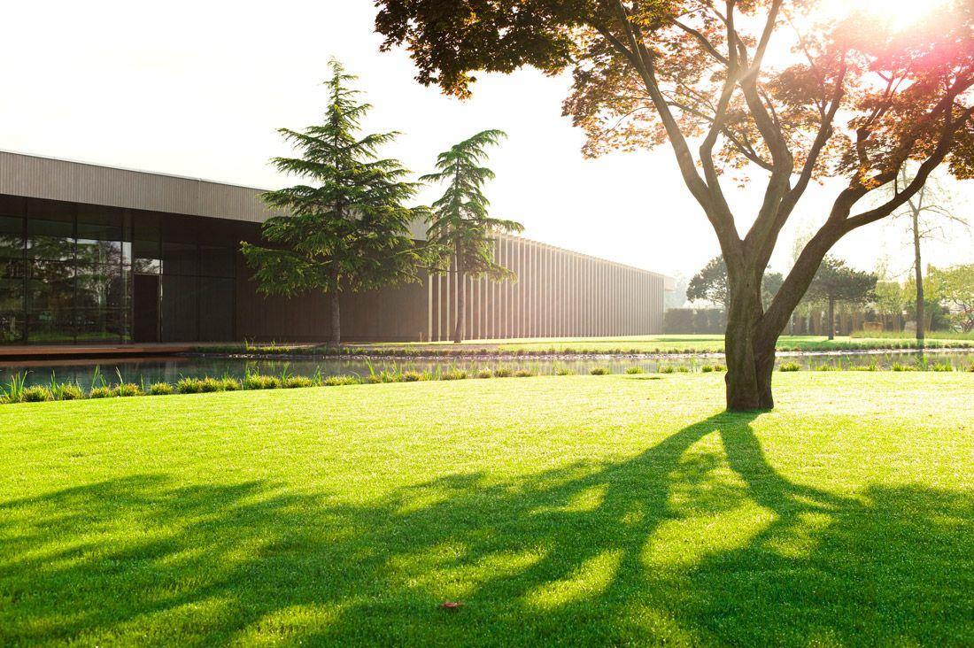 tree museum enea garden design 15 landscape architecture works landezine - Garden Design Trees