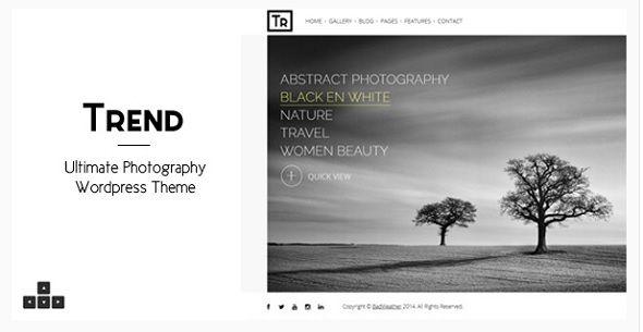 100+ Premium Photography WordPress Themes (2018) | 3300+ Best ...