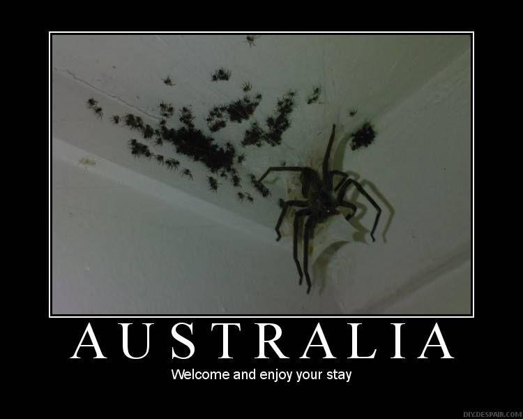 not going to Australia now