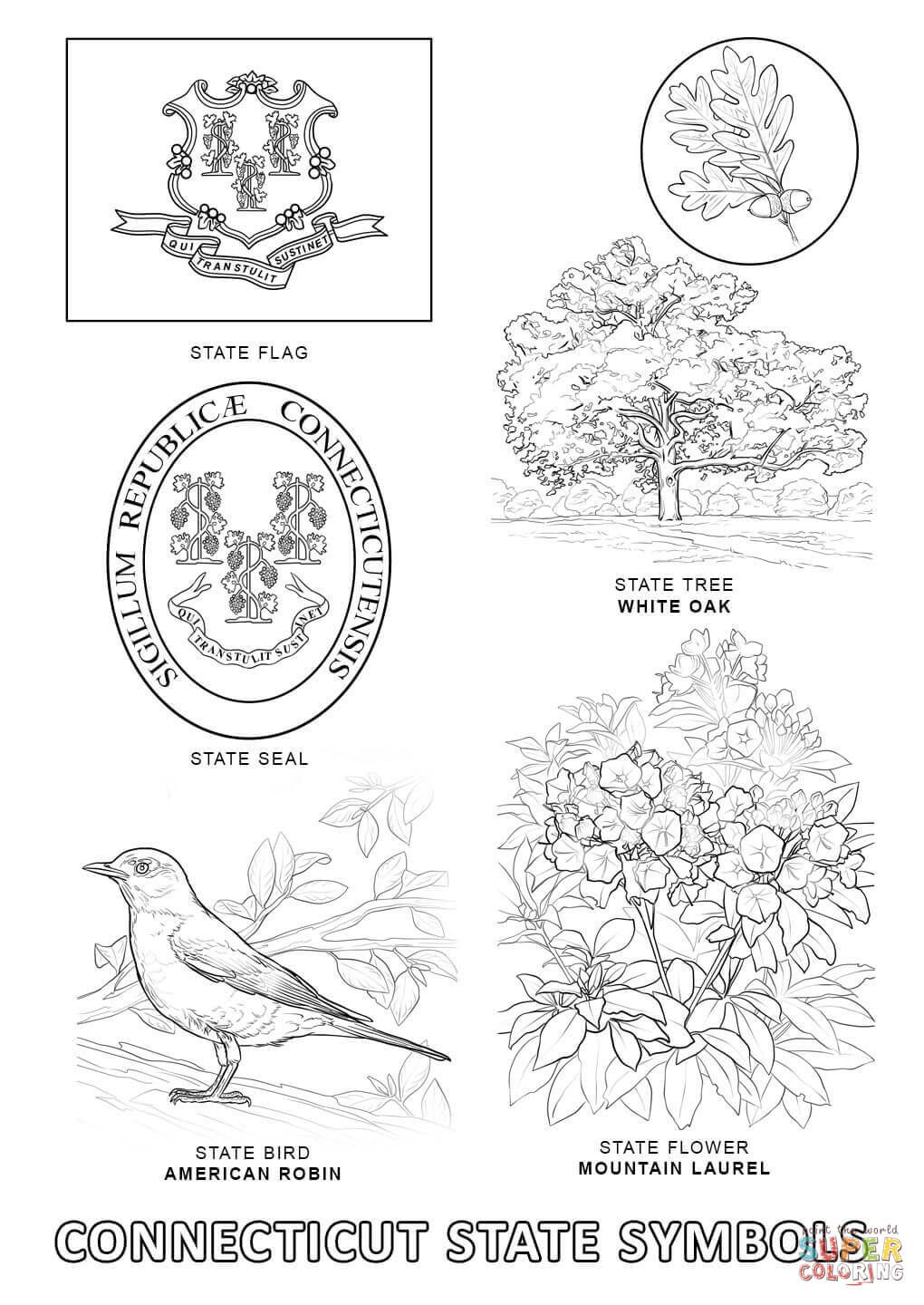 Connecticut State Symbols Coloring Page From Connecticut Category