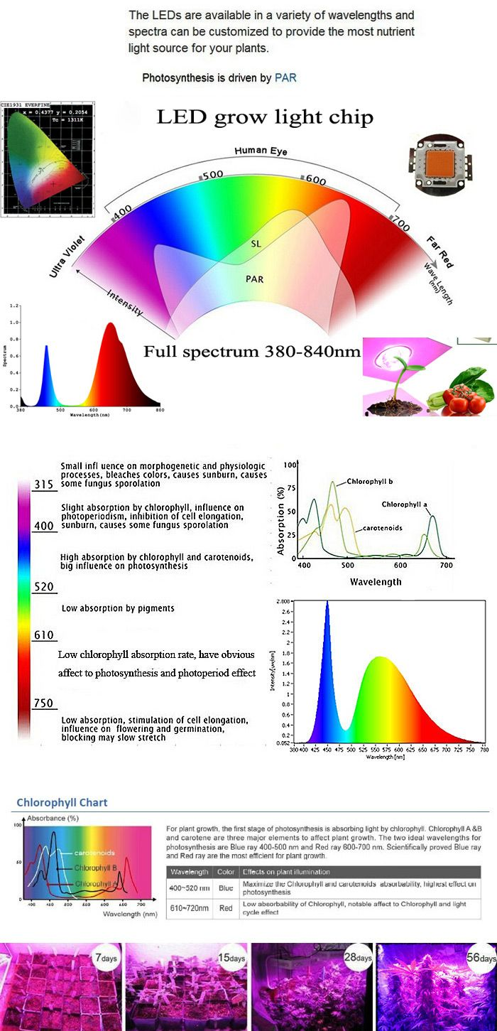 us direct 15w e27 full spectrum plant grow 40 led bulb garden greenhouse plant seedling [ 700 x 1451 Pixel ]