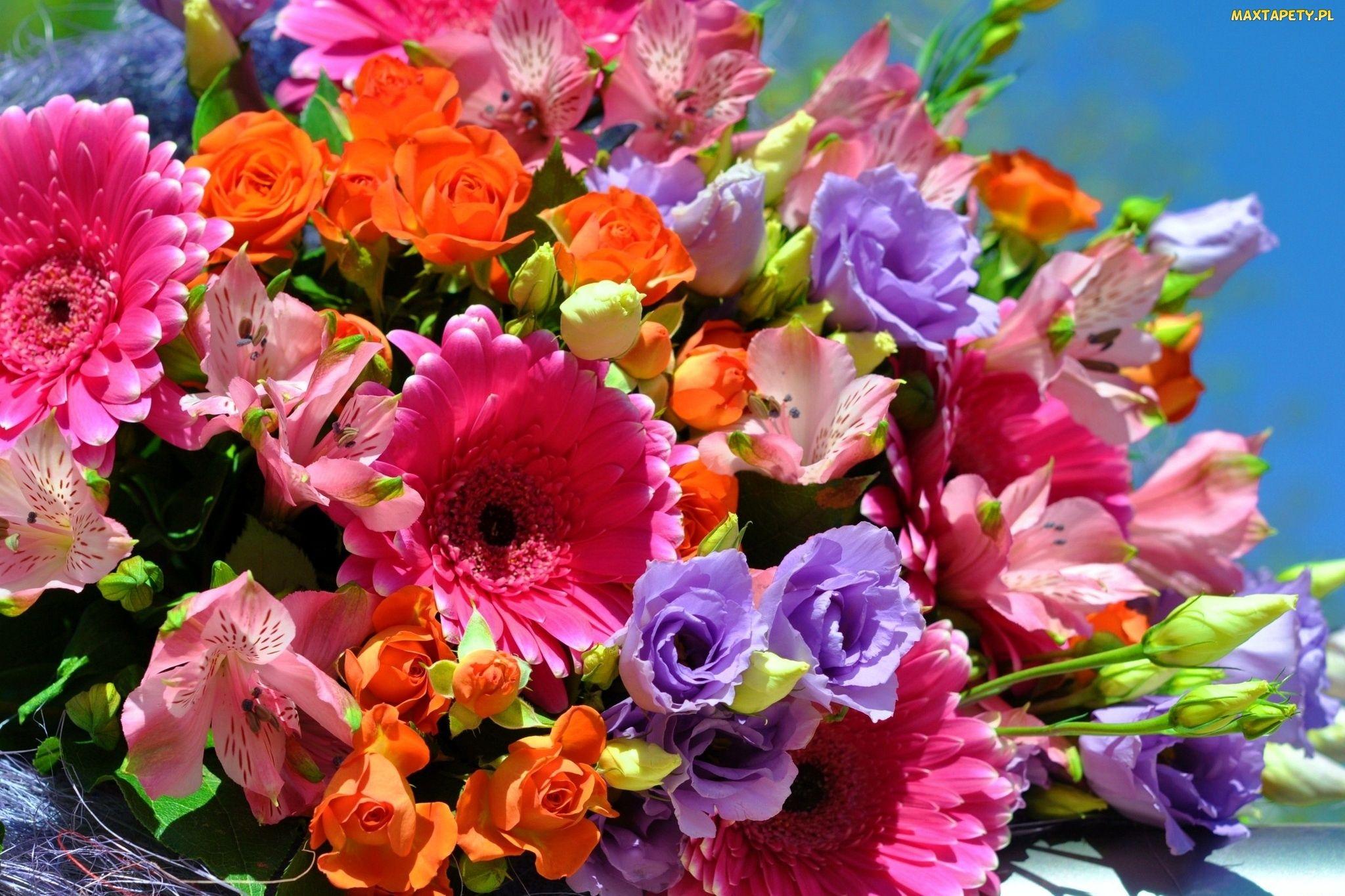 Kwiaty, Kolorowe, Bukiet