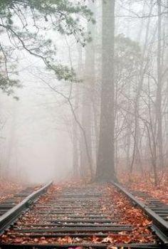 Forgotten Track's