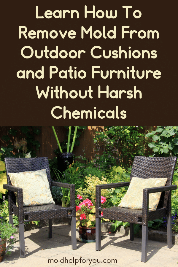 Pin On Mold Help For You Articles, How To Clean Outdoor Furniture Cushions Mold