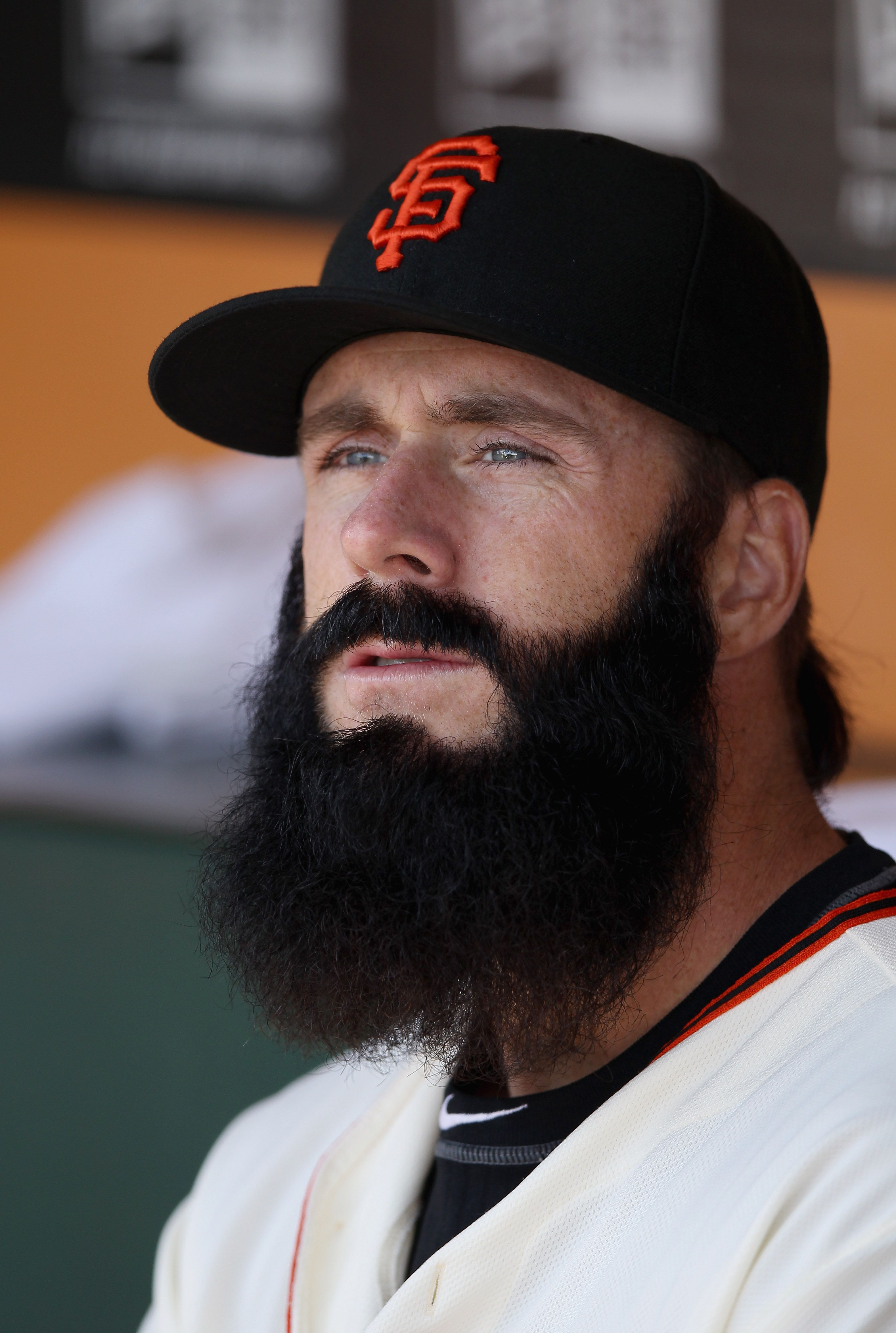 Brian Wilson Giants Quotes Quotesgram