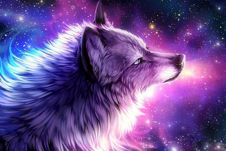 Pin by Katelynn Kamada on art Galaxy wolf, Anime wolf