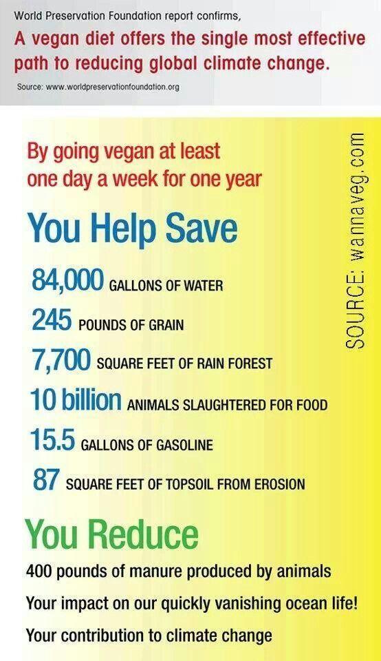 Pro Vegan: benefits of veganism  | Vegan inspiration | Vegan