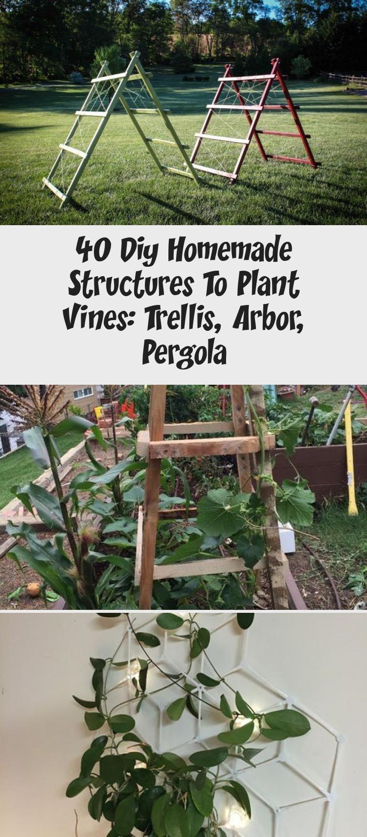 40 diy homemade structures to plant vines trellis arbor
