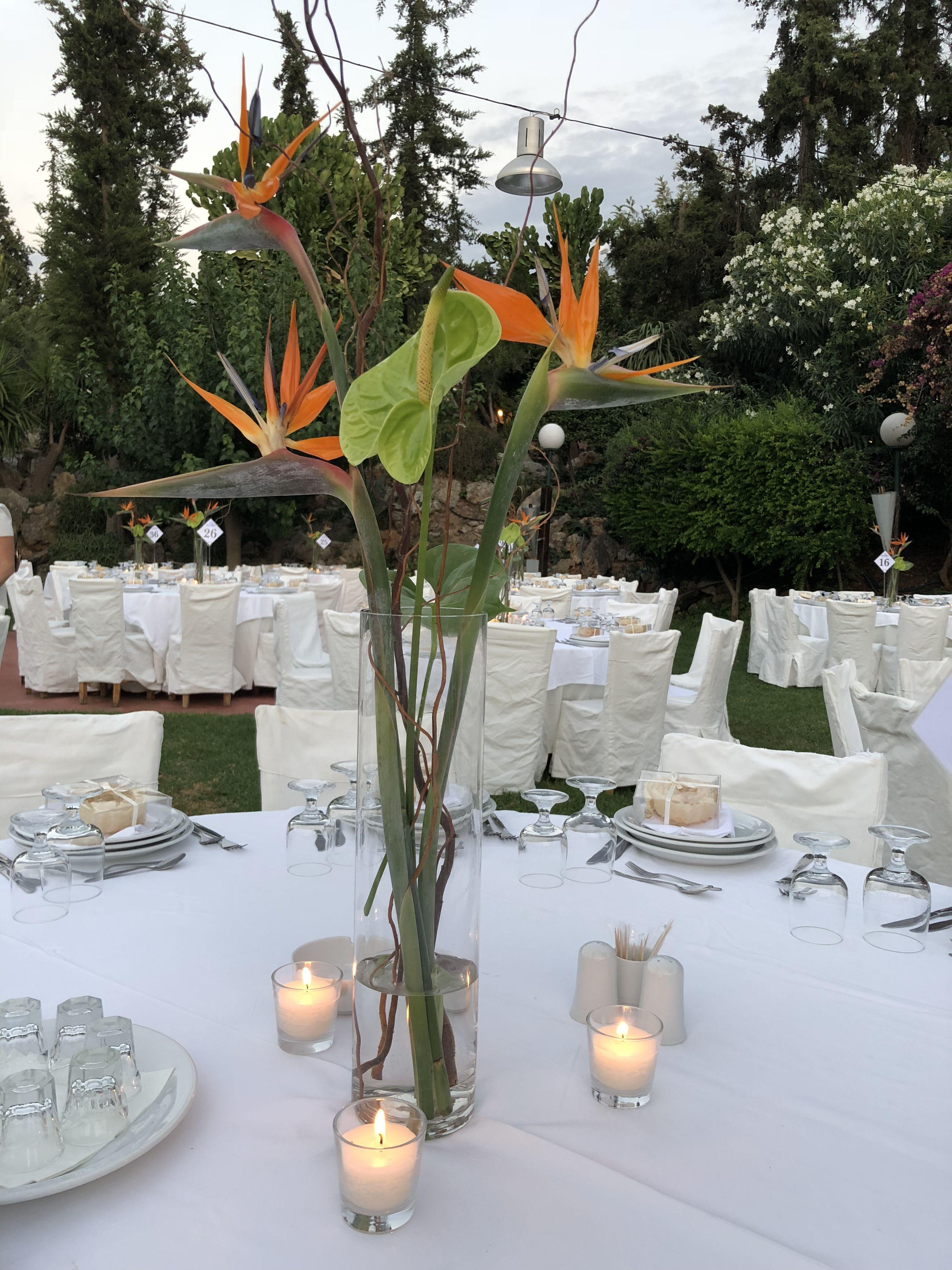 765fb0ebcf4b Wedding decoration with sterlitsia and anthurium !!