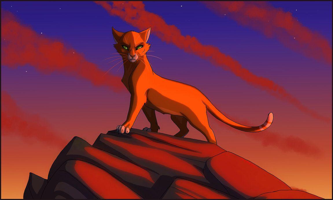 Firestar Thunderclan S Leader Once A Kittypet Named Rusty Then