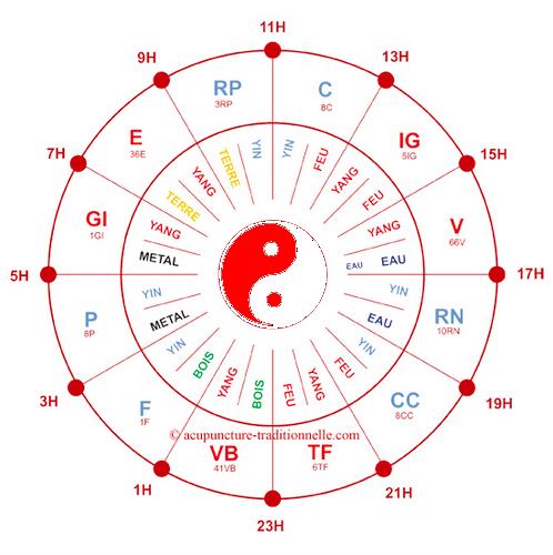 Favori horloge-circadienne.png 498 × 500 pixels | Santé et bien-être  UJ77