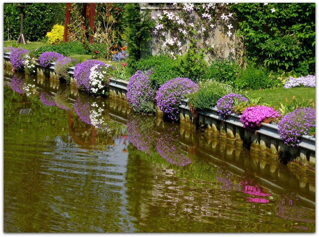 Canal side garden Kidlington - Oxford Canal