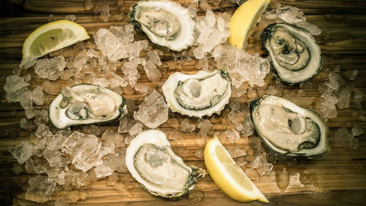 Cleaning and shucking oysters with images shucking