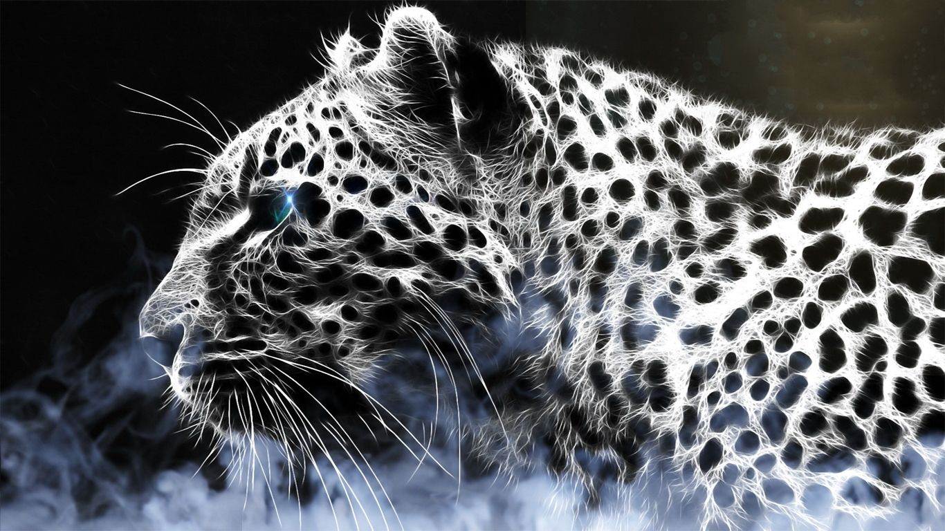 Leopard Pic by Justin Petrie on FeelGrafix 1366×768 Leopard Images Wallpapers (39 Wallpapers) | Adorable Wallpapers