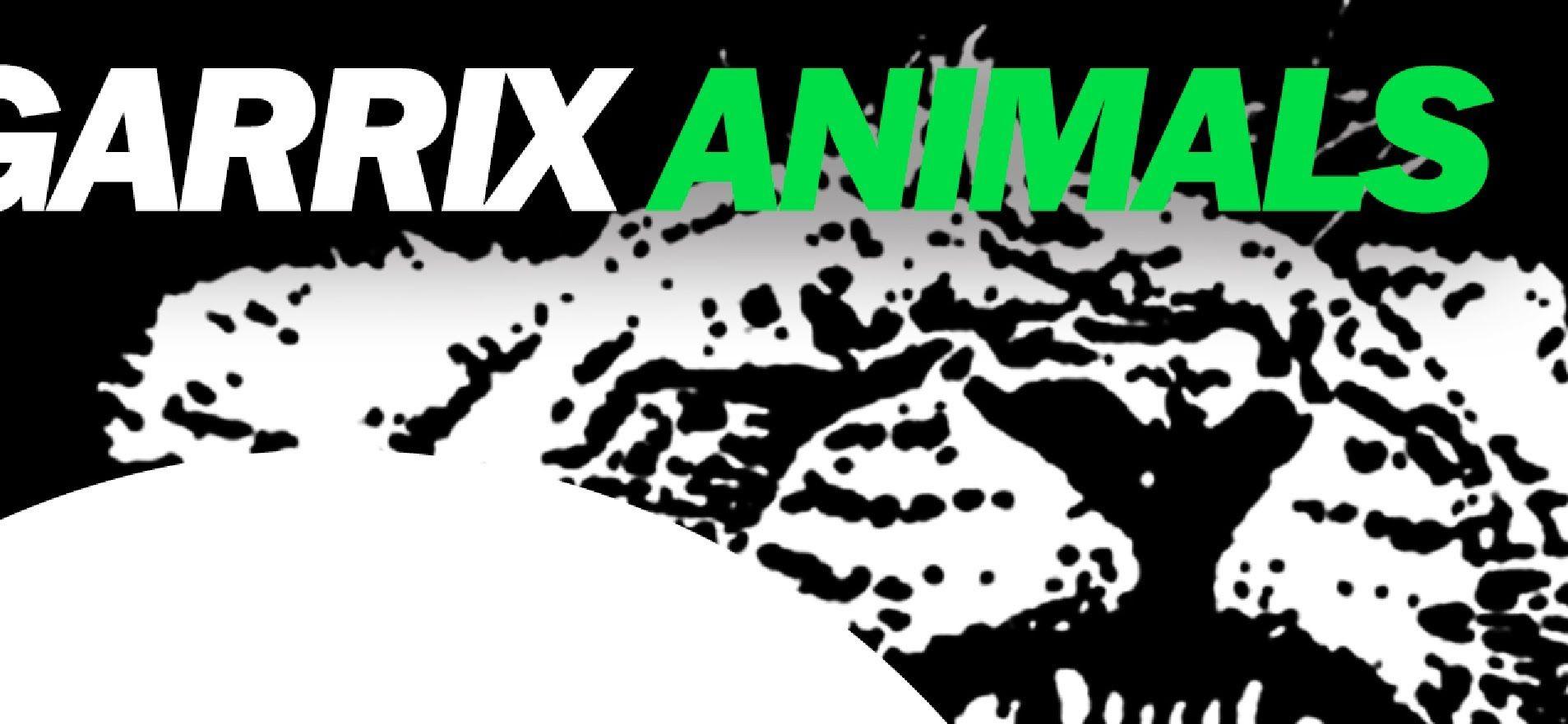 Martin Garrix Animals!! Ahhhh this beat is sooo sick