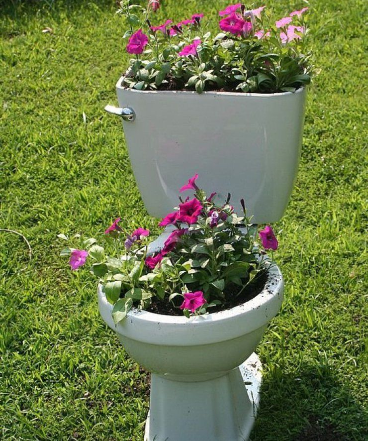 Unique planter ideas to do small gardening