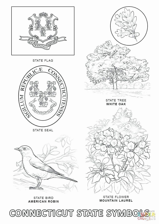 Texas State Bird Coloring Page di 2020 Alabama