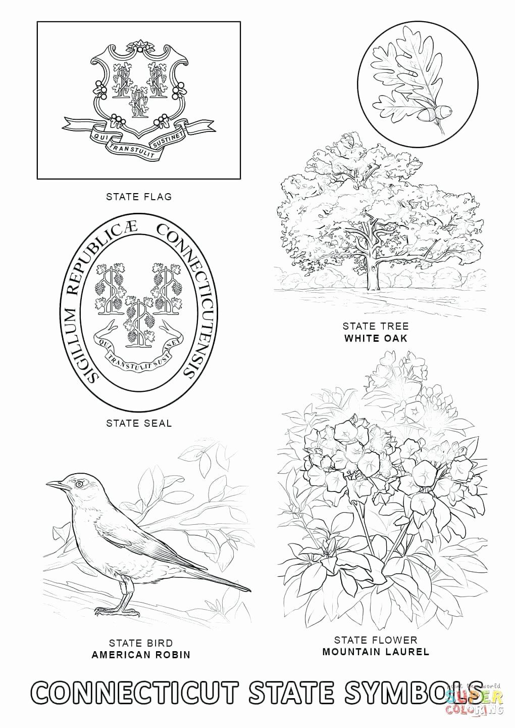 Texas State Bird Coloring Page Unique Mississippi State Flag