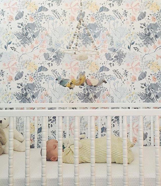 Best Anthro Wallpaper … Girl Nursery Wallpaper Girls Room 400 x 300