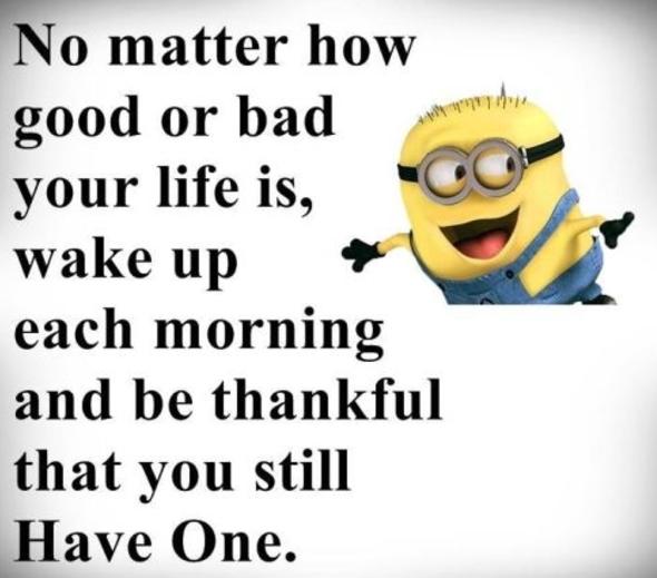 Life Minion Quotes Funny Minion Quotes Funny Minion Memes Minions Funny