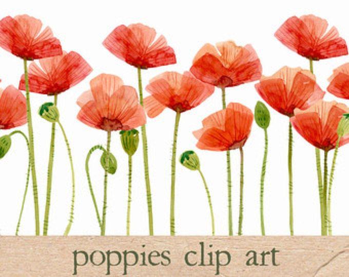 Watercolor poppies flowers clipart poppy hand painted watercolor digital clipart watercolor poppies flower clipart mightylinksfo