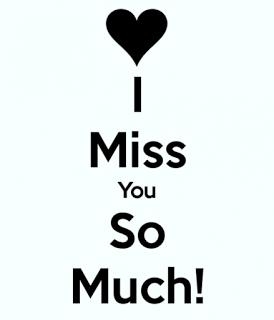 Che La Vita Continua I Miss You So Much Mehtab Pinterest Miss