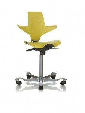 Hag Capisco Puls 8010 Chair Chair Ergonomic Chair Mattress Design